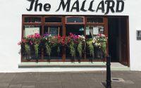 Mallard Restaurant (Limerick)