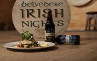 Belvedere Irish Nights @ the Belvedere Hotel